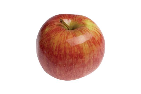 manzana gloster