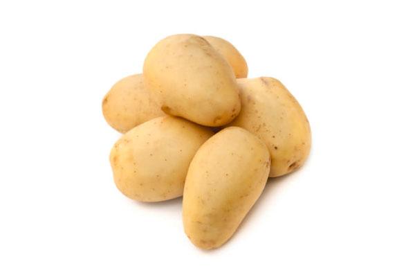 patata terreno