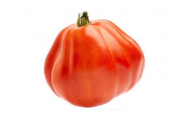 tomate corazon de buey