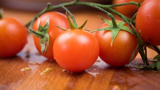 tomate fruta o verdura