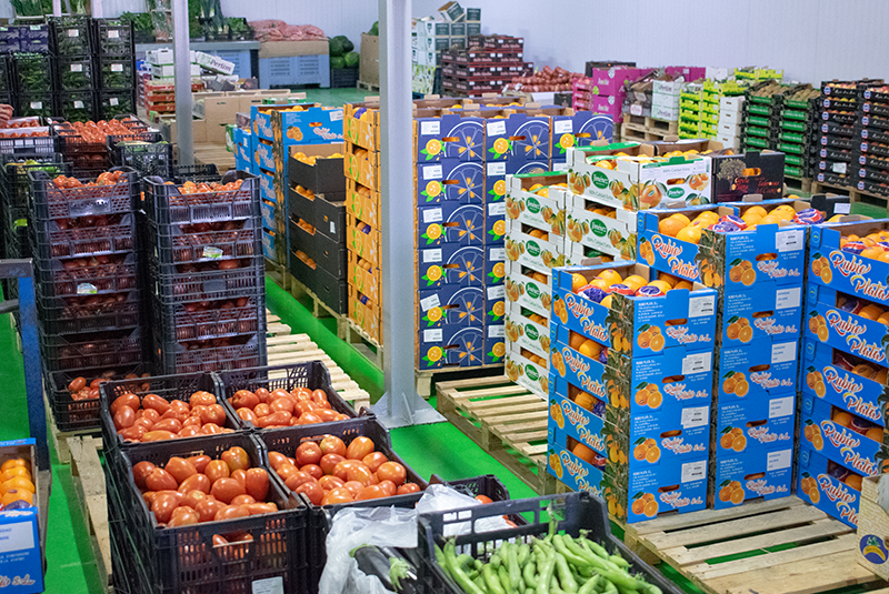 mayorista de frutas y verduras en sevilla